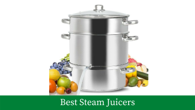 All About Best Steam Juicers That You Can Buy Right Now [Updated]