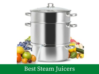 Best Steam Juicers Machine Reviews