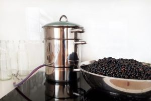 image showing steam juicer