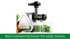 Best Commercial Juicer for Leafy Greens