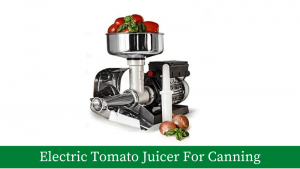 Electric Tomato Juicer For Canning