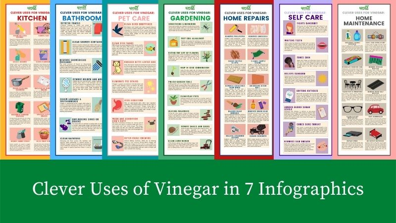 clever uses of vinegar